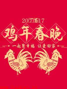 2017鸡年春晚 2017年