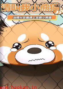 漫动画·请叫我小熊猫
