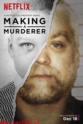 制造杀人犯第二季