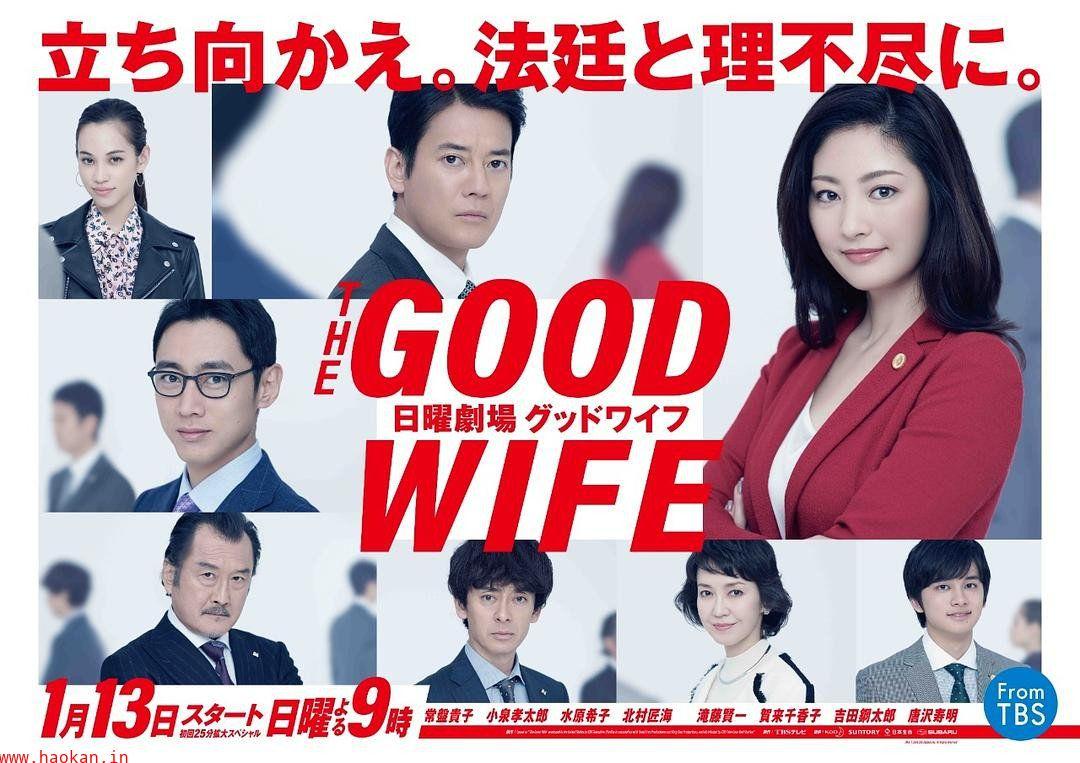 傲骨贤妻 GOOD WIFE